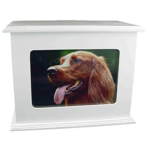 Urna para cinzas animais Baú porta-objetos e porta-retrato (branco, laqueado)